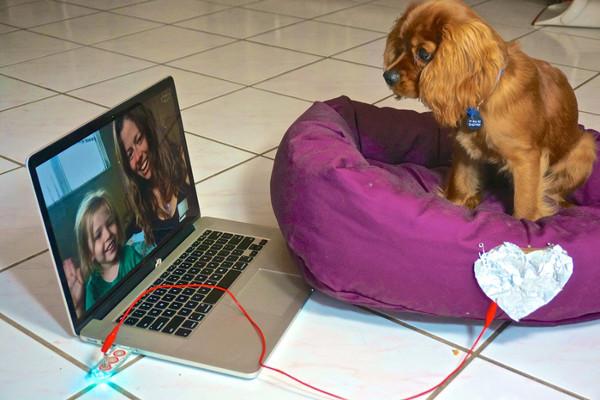 Αρκεί το κουτάβι να αγγίξει με την πατούσα του την καρδιά από αλουμινόχαρτο, για να καλέσει μέσω skype την αγαπημένη του οικογένεια. (Φωτογραφία από την καμπάνια της ομάδας στο Kickstarter)